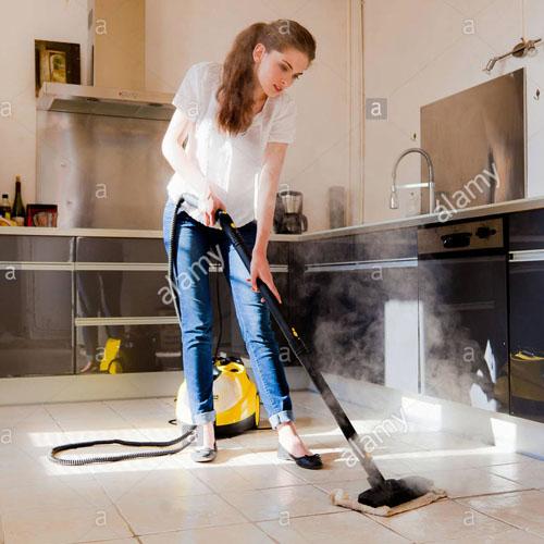 Steamer Vacuum Cleaners