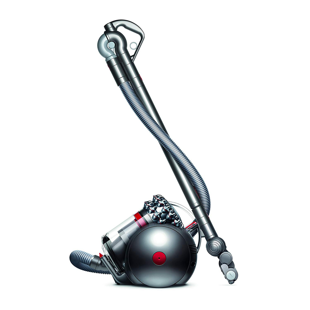 dyson ball animal