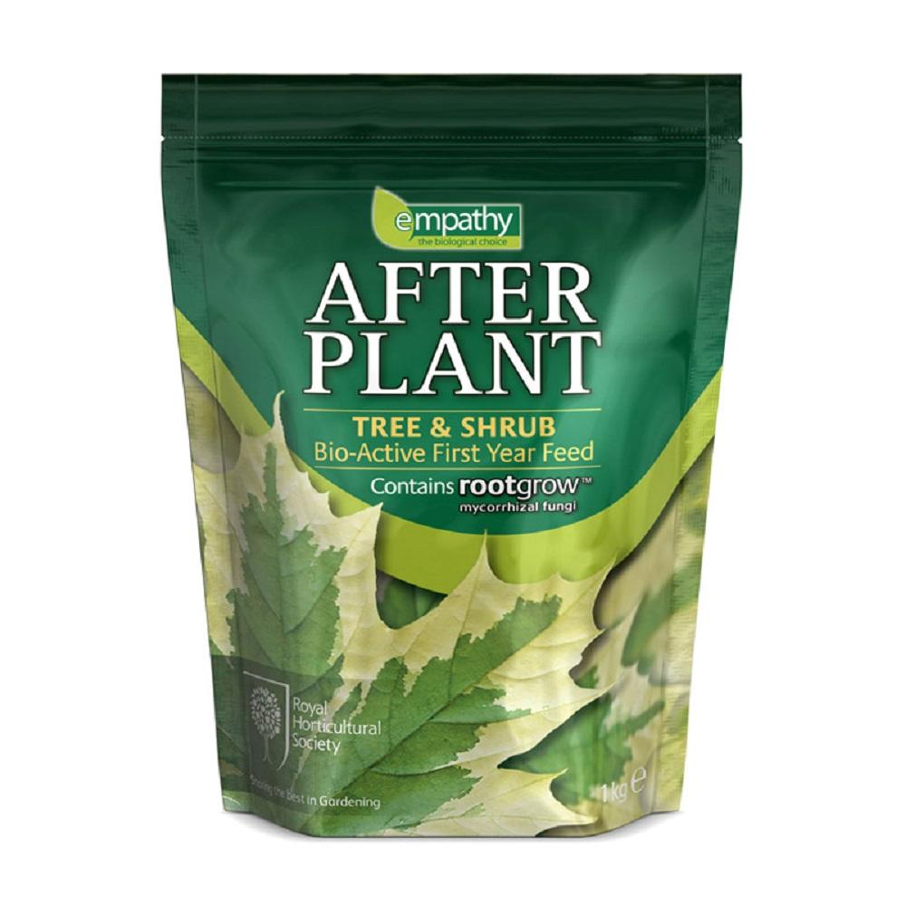 after plant tree shrub