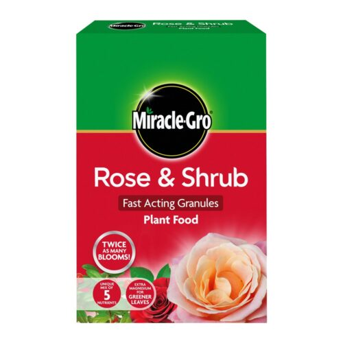rose & Shrub